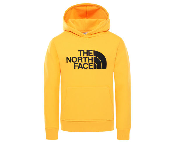Dessuadores _BRAND_ THE NORTH FACE _FOR_ Nens. _SPORT ACTIVITY_ Mountain Style, _ITEM_: YOUTH DREW PEAK PLV HD.